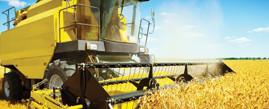 kelpen_oil_produtos_agricola