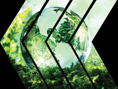 kelpen_oil_meio_ambiente